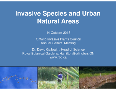 Invasive Species and Urban Areas