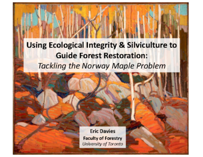 Using Ecological Integrity & Silviculture to Guide Forest Restoration: Tackling the Norway Maple