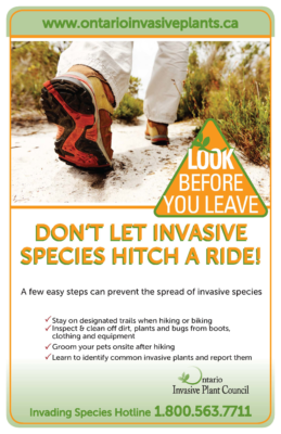 Look Before You Leave – Hikers