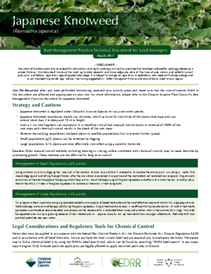 Japanese Knotweed Technical Bulletin
